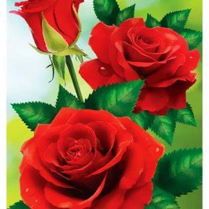 Broderie Diamant Rose Pure